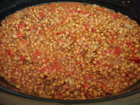 This Lentil Tomato Stew doesn't photograph so pretty, but it's damn tasty!